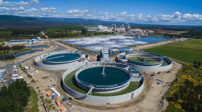 ARAUCO aprueba construcción de MAPA, la mayor inversión en la historia de la compañía