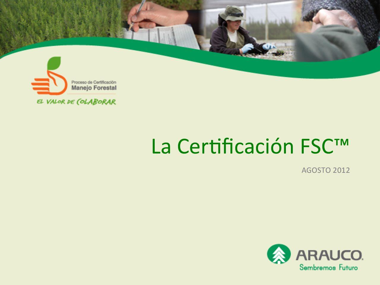 Que es FSC ®