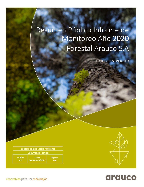 Resumen Público Informe Monitoreo 2020