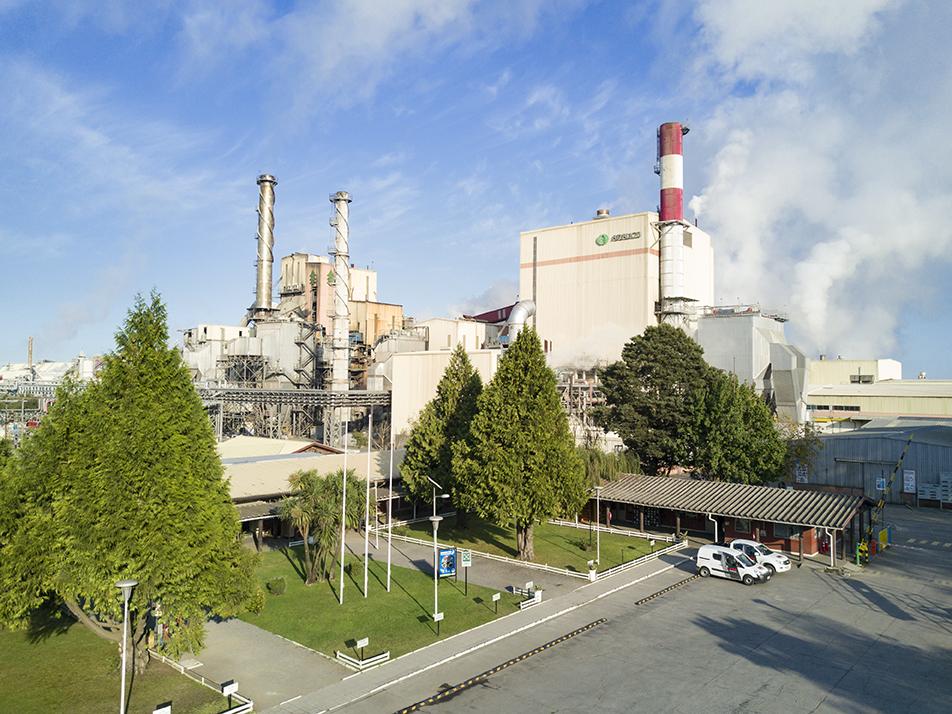 Detención funcionamiento planta Horcones