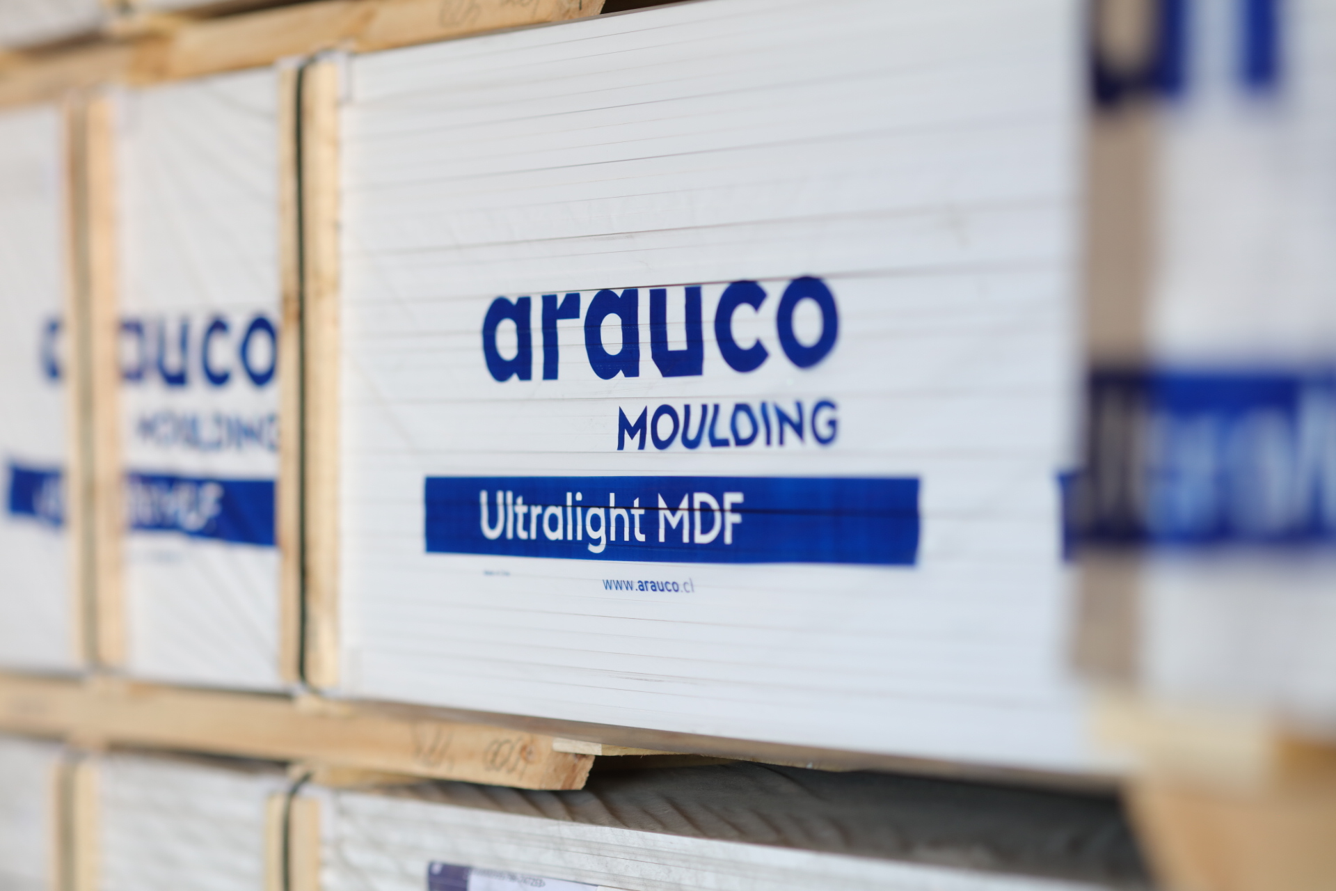 https://www.arauco.cl/chile/wp-content/uploads/sites/14/2020/04/IMGT4646.jpg