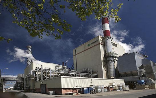Aporte de ARAUCO al SIC alcanza un 5% del total de las Energías Renovables no Convencionales
